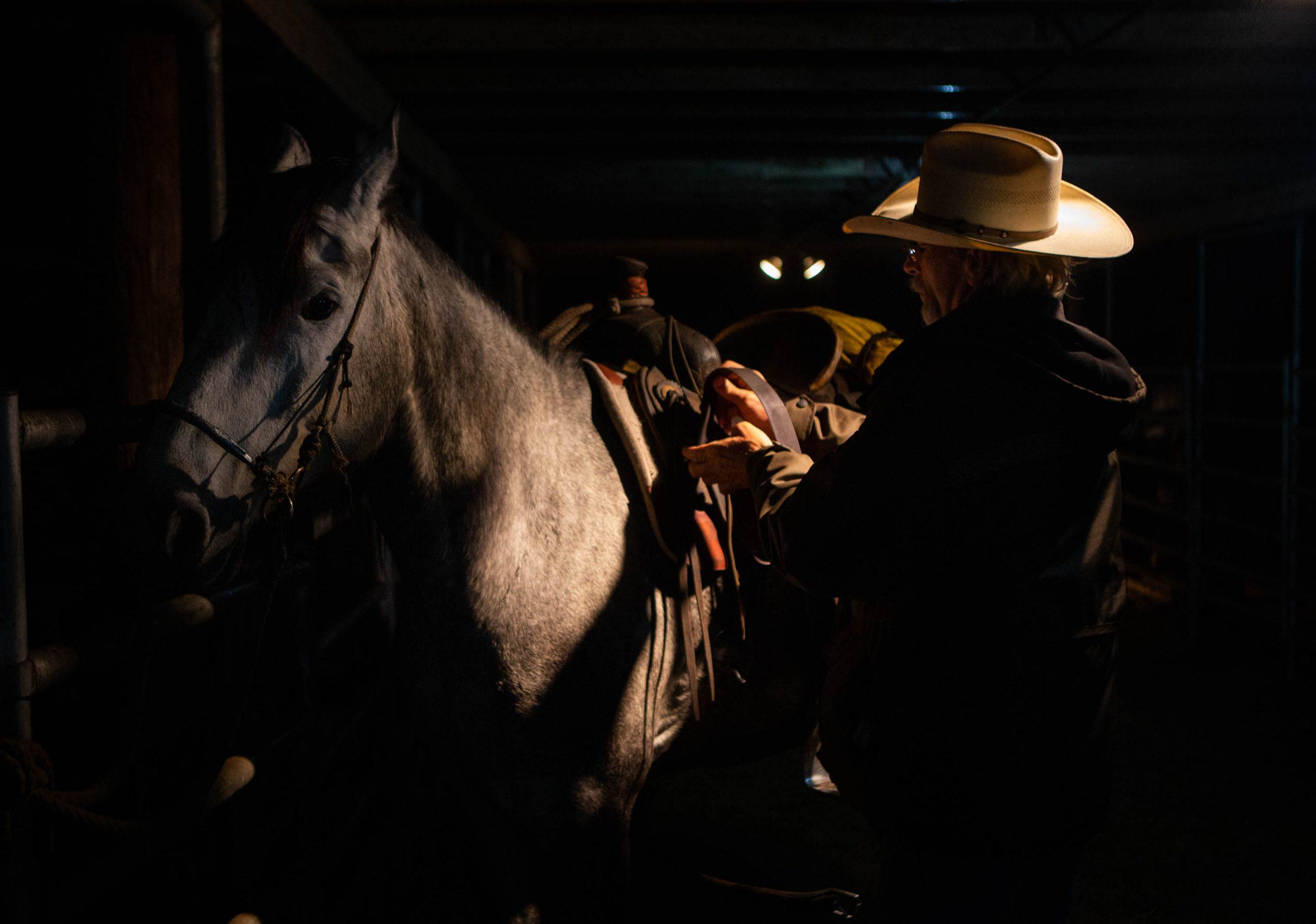 Cowboy saddling horse